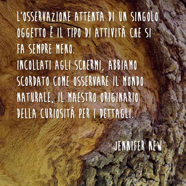 abbastanza Percorsi naturalistici - Torre Colombaia - Agriturismo biologico MS51