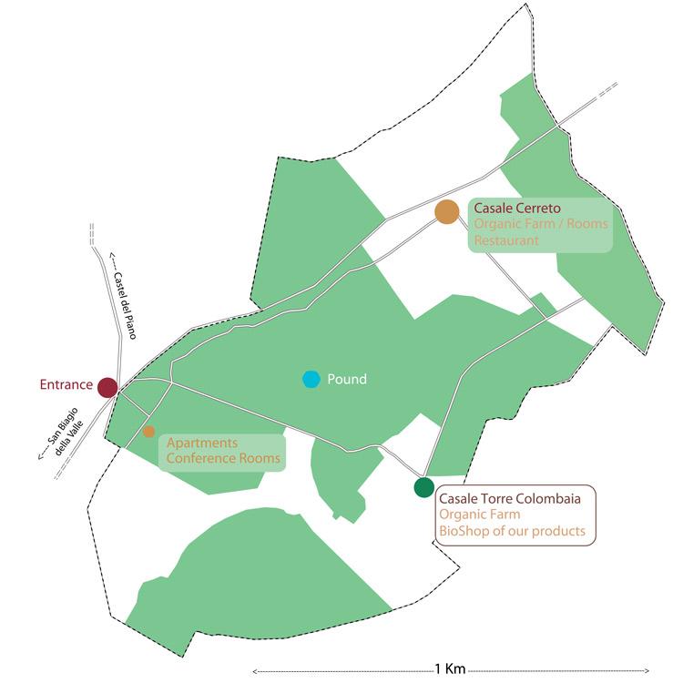 mappa_accoglienza_ENG