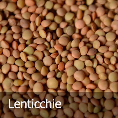 lenticchie_ita